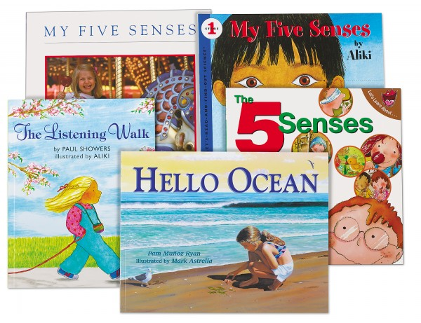 Five Senses Theme Book Library
